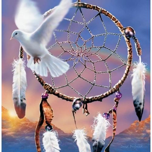 Diamond Painting dromenvanger met duif