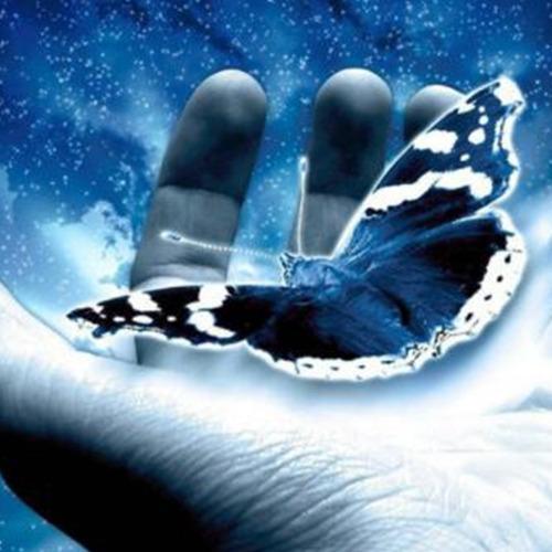 Diamond Painting vlinder in hand