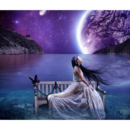 01-fantasy1 Diamond Painting ronde steentjes vrouw in maanlicht