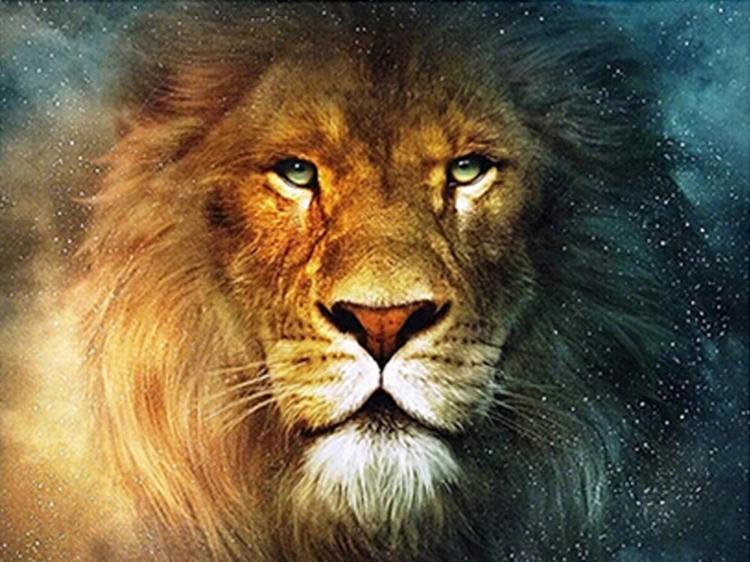 01-60600 Diamond Painting ronde steentjes leeuw