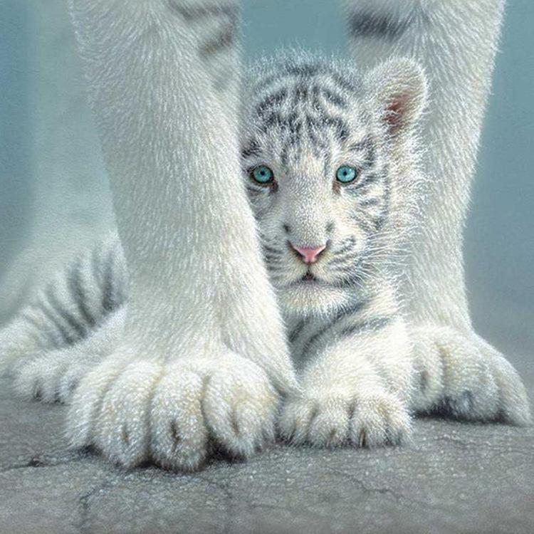 01-51199 Diamond Painting ronde steentjes witte tijger met jong
