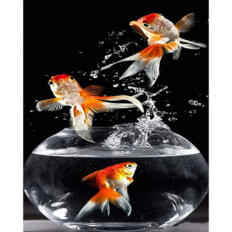 01-50778 Diamond Painting ronde steentjes goudvissen