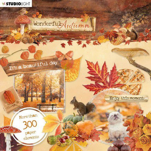 Studio Light Die Cut Book 15x15 Wonderful Autumn nr.664 EASYWA664 (07-20)