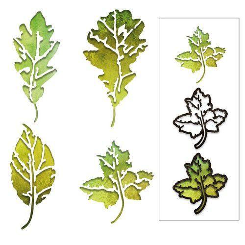 Sizzix Thinlits Die Set - 8PK Leaf Print 664970 Tim Holtz (10-20)