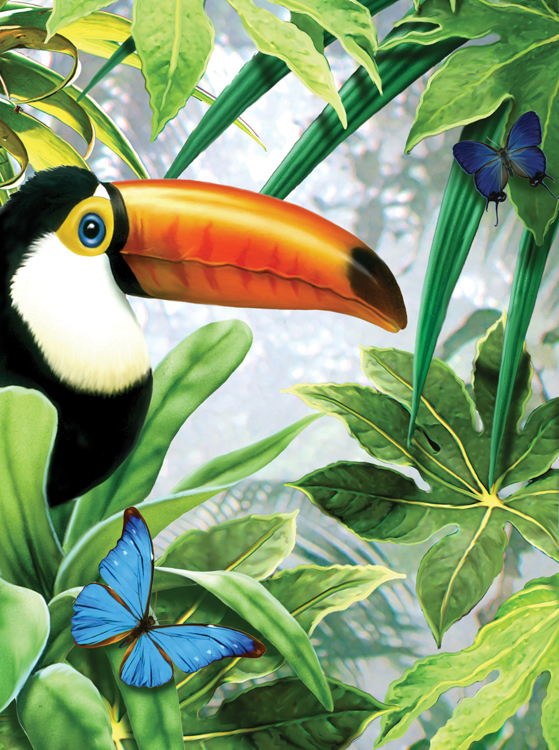 Painting by numbers JUNGLE TOUCAN