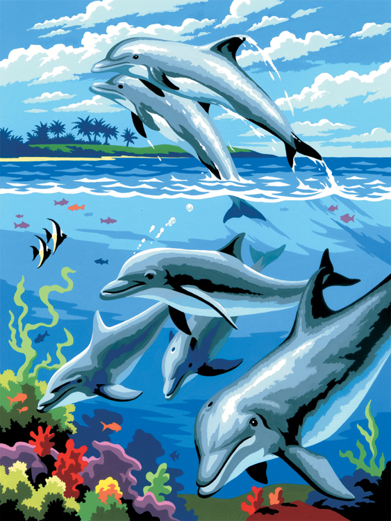 Painting by numbers DOLPHINS