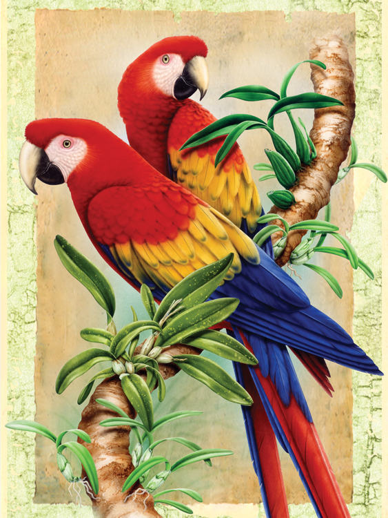 Painting by numbers BAMBOO PARROTS
