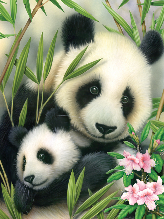 Painting by numbers PANDA & BABY
