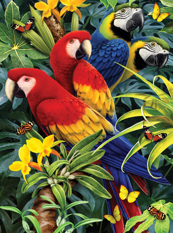 Painting by numbers MAJESTIC MACAWS