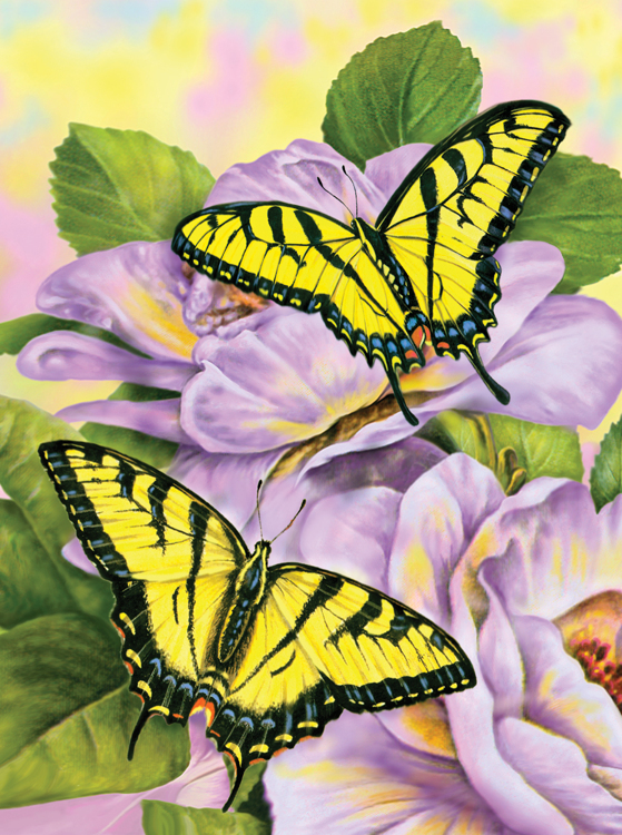 Painting by numbers SWALLOWTAIL BUTTERFL