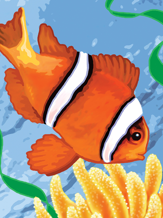 Painting by numbers CLOWN FISH
