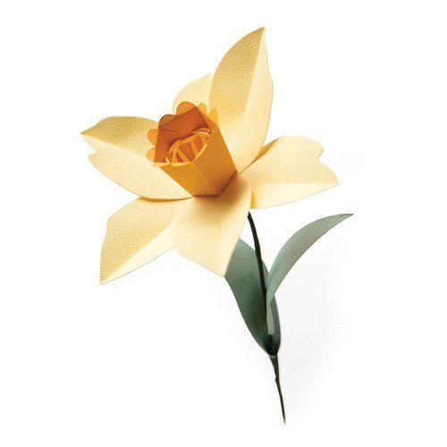 Sizzix Bigz L Die - Daffodil 665107 Olivia Rose (01-21)