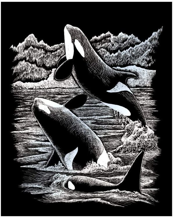 SILVER ENGRAVING ORCA WHALES
