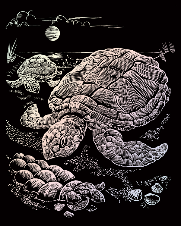 HOLOGRAPHIC ENGRAVING SEA TURTLE