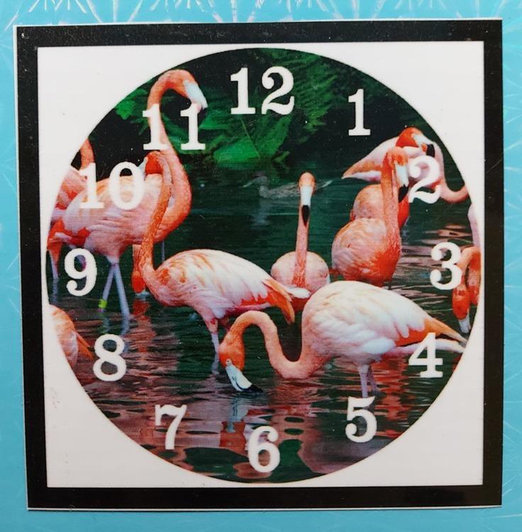 klok Flamingo's