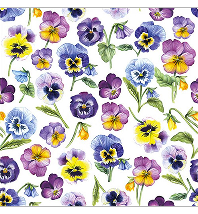 Pansy All Over