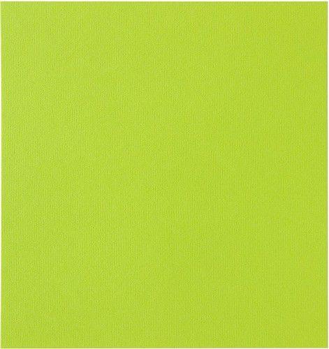 Papicolor Scrapbook 302x302mm appelgroen 200gr-CV 10 vel 298967 - 302x302mm