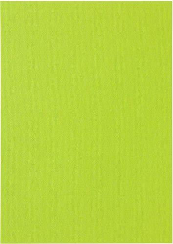 Papicolor Papier A4 appelgroen 105gr-CV 12 vel 300967 - 210x297mm