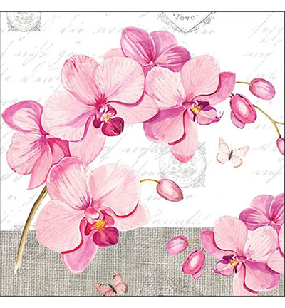 Orchids With Love