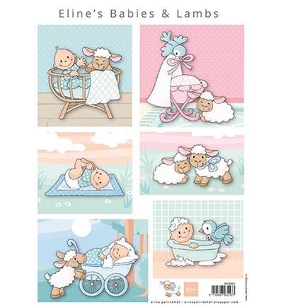 Eline's babies & lambs