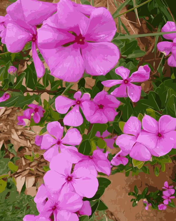 Schilderen op nummer paarse bloemen