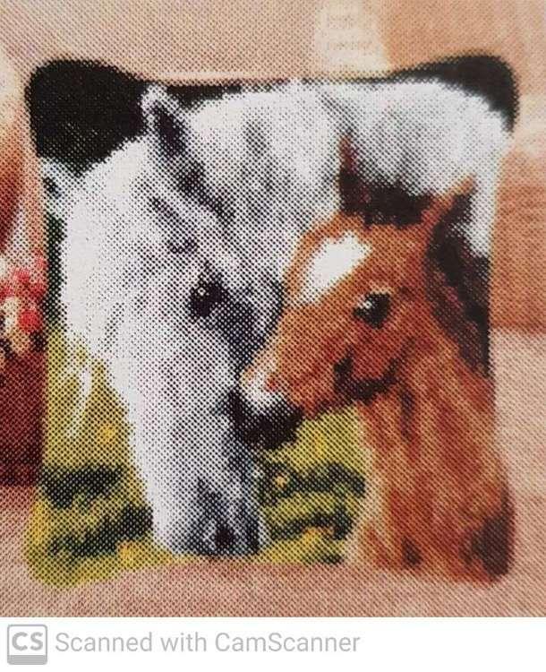 Knoopkussen 42x42cm paarden