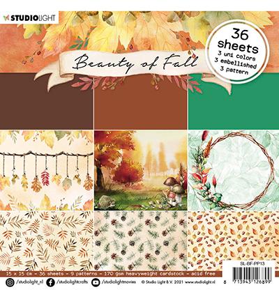 SL Paper pad Pattern paper Beauty of Fall nr.13
