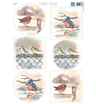Mattie's mooiste Birds in winter