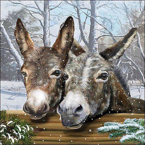 CraftEmotions servetten 5st - Ezels in de sneeuw 33x33cm Ambiente 33315355 (09-21)