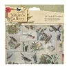 A6 Cards & Envelopes (12pk) - Nature`s Gallery