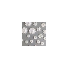 Bloemen resin -wit transparant 1 10mm - 19mm 12347-4711