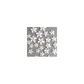 Bloemen resin -wit transparant 2 12mm - 17mm 12347-4721