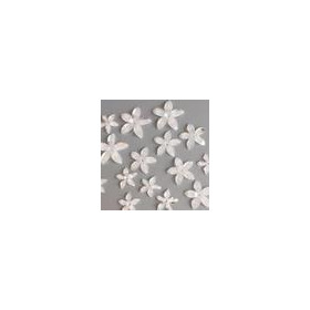 Bloemen resin -wit transparant 3 15mm - 25mm 12347-4731