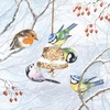 CraftEmotions servetten 5st - Winter vogels 33x33cm Ambiente 33304545