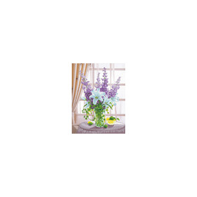 650.001 No-Count Cross Stitch Kits Lillies & Hollyhocks 48x63cm