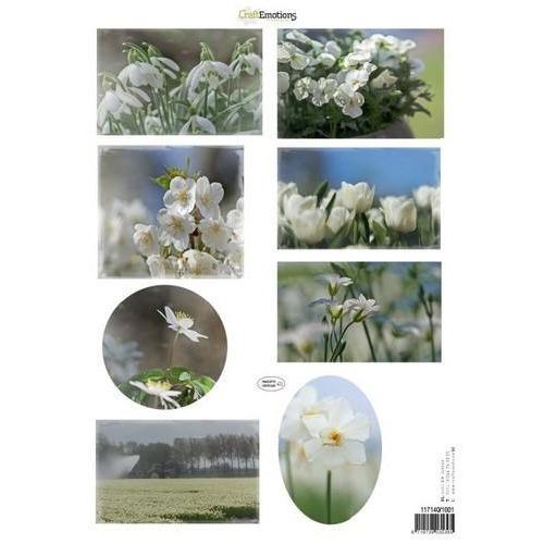 CraftEmotions Knipvellen voorjaarsbloemen 1 wit A4 160 grm (02-18)